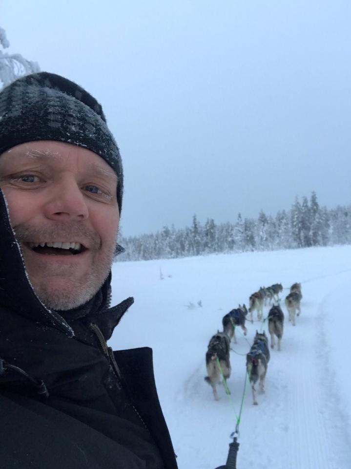 Bilder av sleddog fra Hedmark