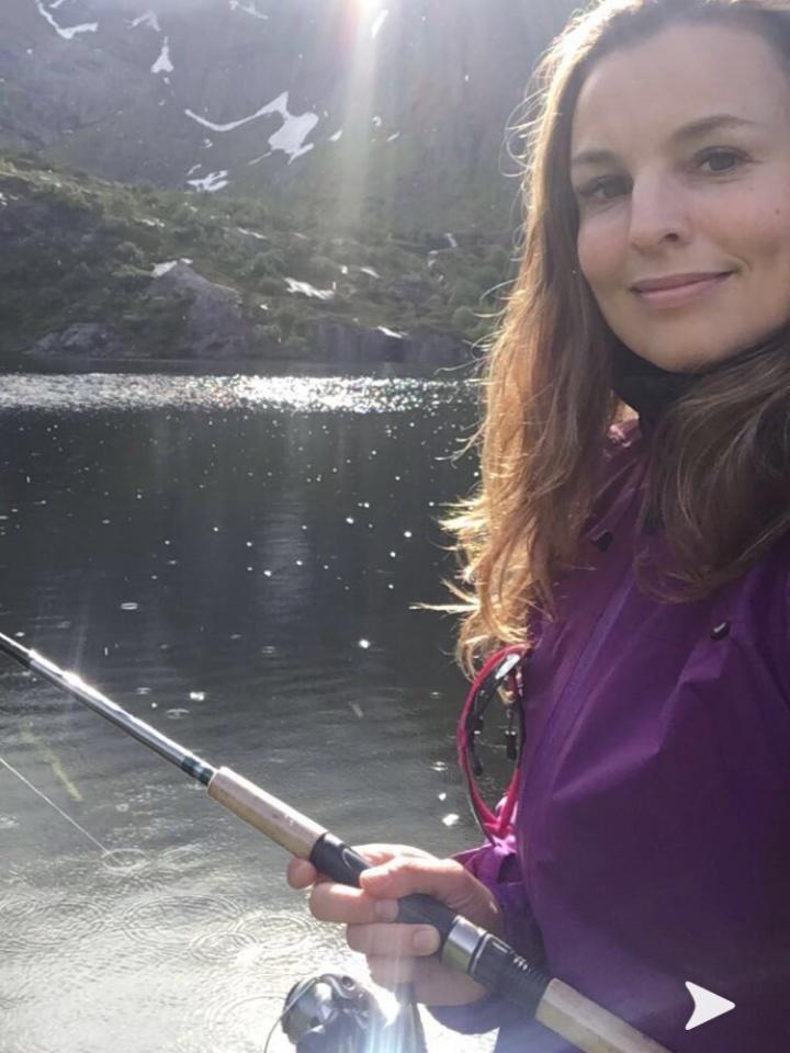 Bilder av Fjelljent fra Nordland
